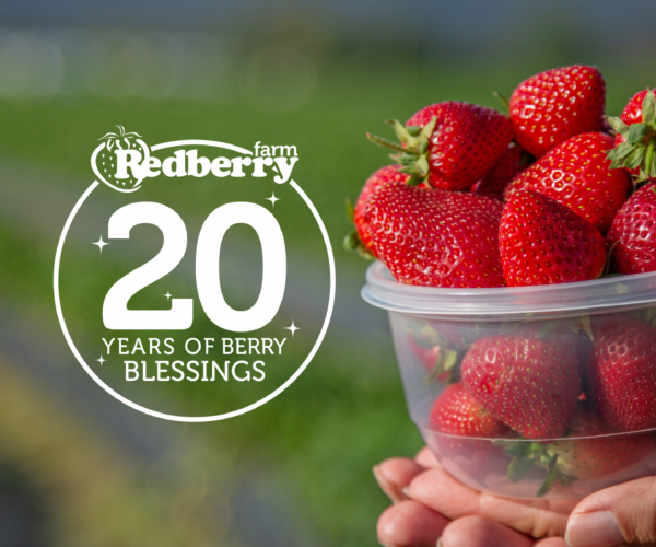 20 Years of Berry Blessings